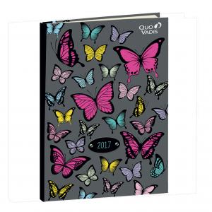 Butterfly-2017